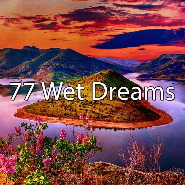 77 Wet Dreams