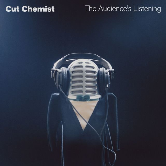 The Audience's Listening (DMD Album)