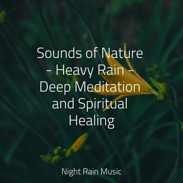 Sounds of Nature - Heavy Rain - Deep Meditation and Spiritual Healing