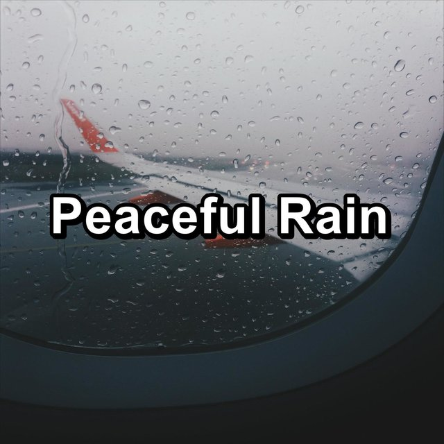 Peaceful Rain