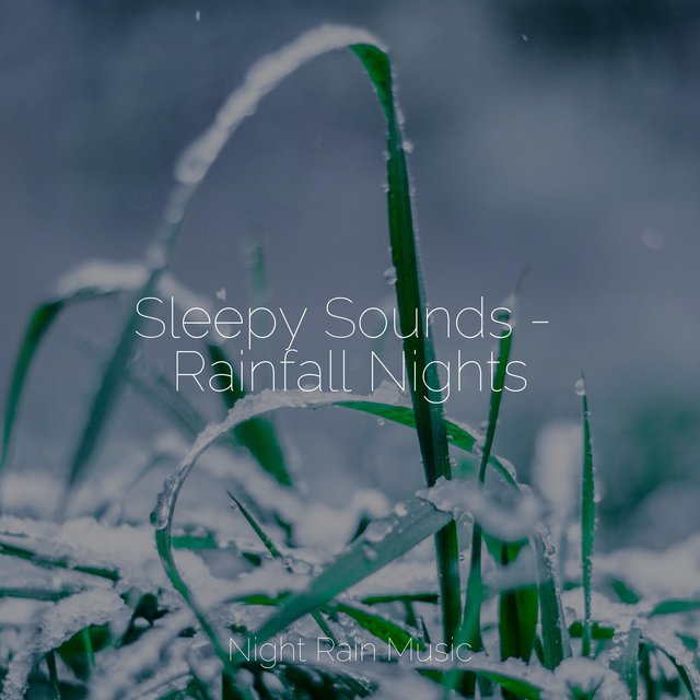 Sleepy Sounds - Rainfall Nights