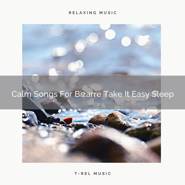 Calm Songs For Bizarre Take It Easy Sleep