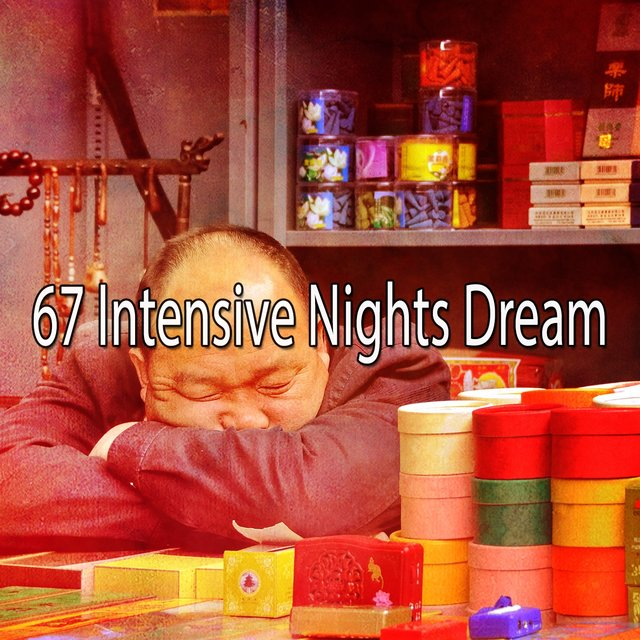 67 Intensive Nights Dream