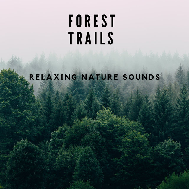 Forest Trails, Relaxing Nature Sounds