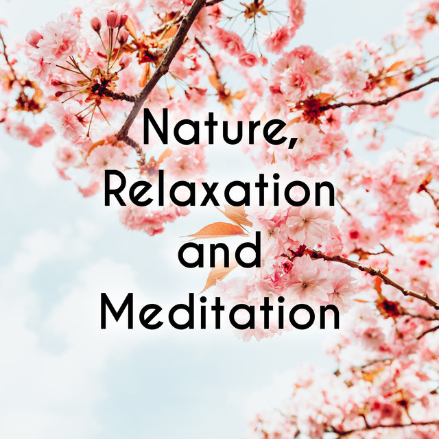 Nature, Relaxation and Meditation - Feel Like in the Asian Zen Garden Thanks to This Ambient New Age Music, Essential Relaxation Time, Meditation for Your Soul