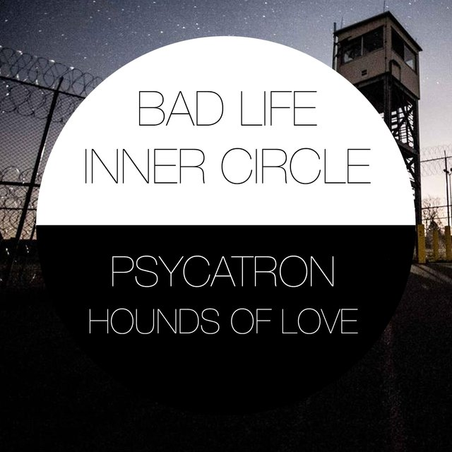 Psycatron Presents Hounds of Love