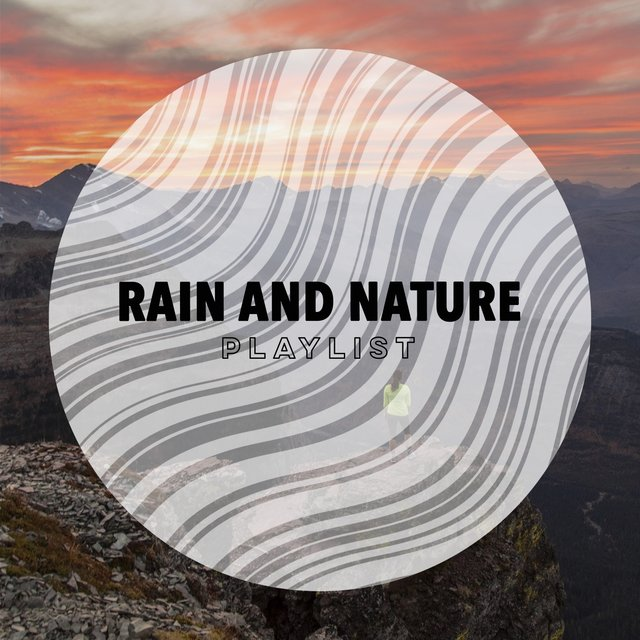 Background Tranquil Rain and Nature Playlist