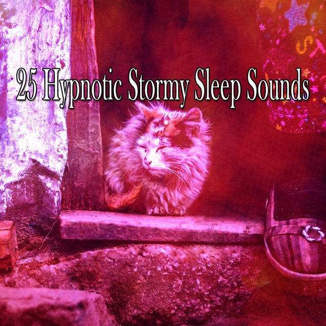 25 Hypnotic Stormy Sleep Sounds