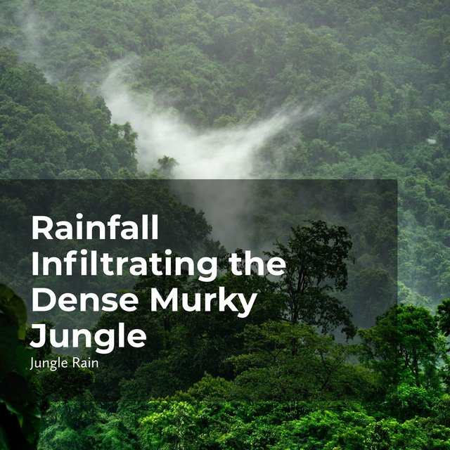 Rainfall Infiltrating the Dense Murky Jungle