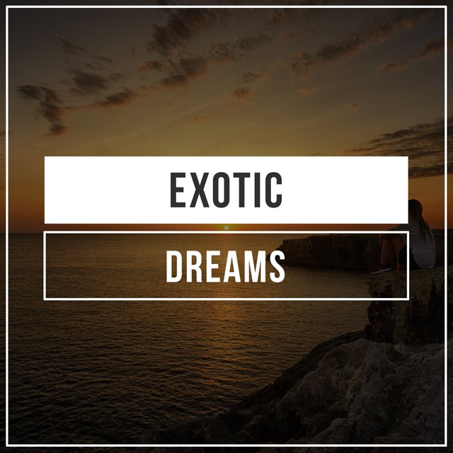 # 1 A 2019 Album: Exotic Dreams