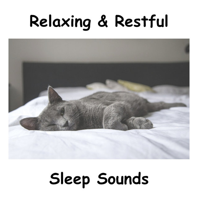 Relaxing & Restful Sleep Sounds