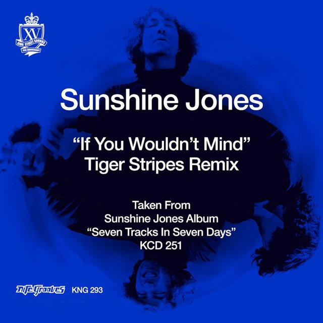 If You Wouldn't Mind (Tiger Stripes Remixes)