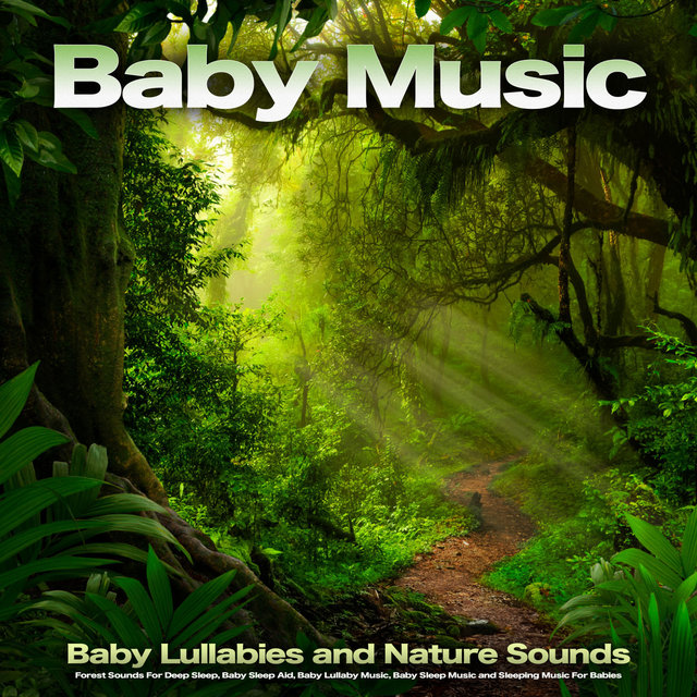 Baby Music: Baby Lullabies and Nature Sounds, Forest Sounds For Deep Sleep, Baby Sleep Aid, Baby Lullaby Music, Baby Sleep Music and Sleeping Music For Babies
