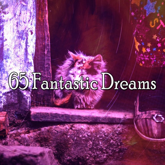 65 Fantastic Dreams