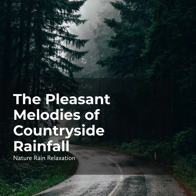 The Pleasant Melodies of Countryside Rainfall