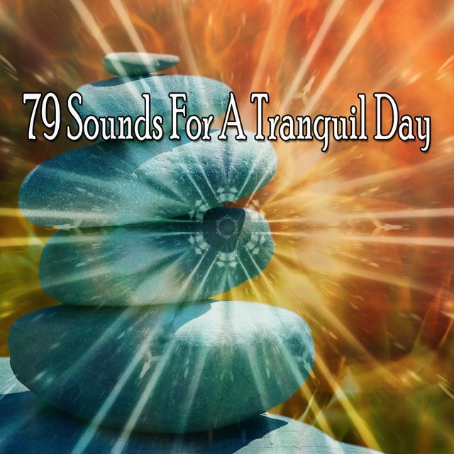 79 Sounds for a Tranquil Day