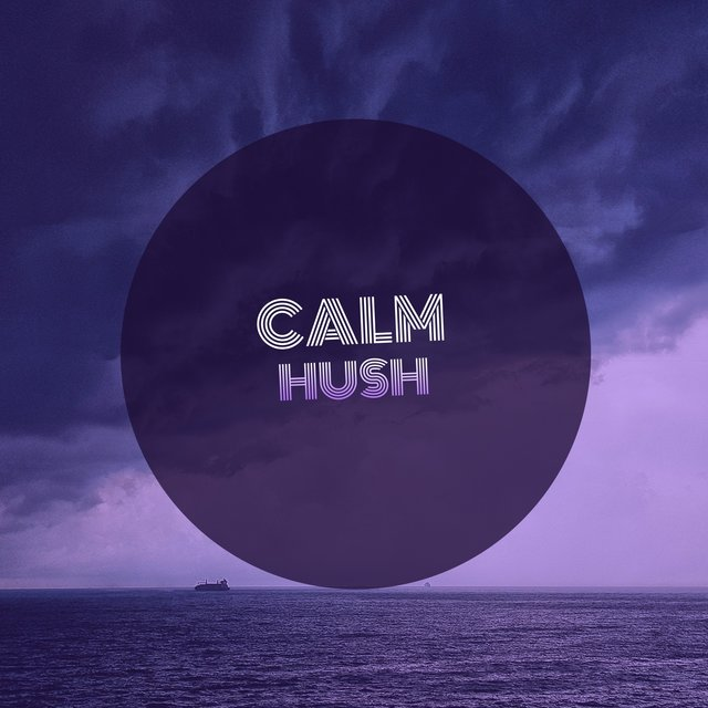 # 1 A 2019 Album: Calm Hush