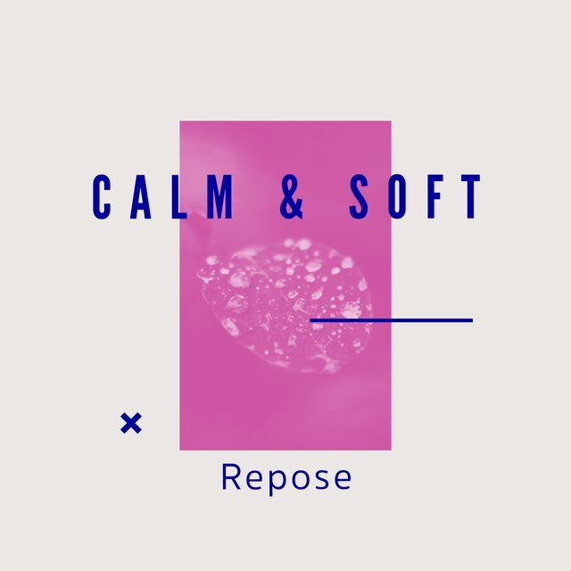 # 1 Album: Calm & Soft Repose