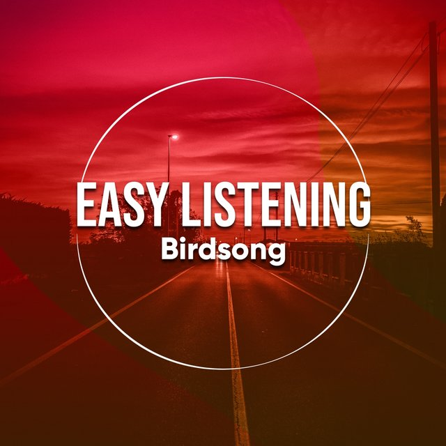 # 1 Album: Easy Listening Birdsong