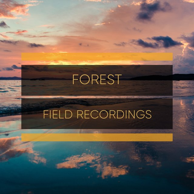 Peaceful Garden Forest Field Recordings