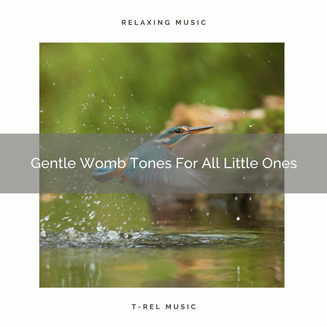 Gentle Womb Tones For All Little Ones
