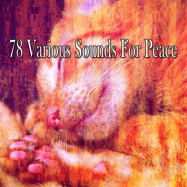 78 Various Sounds for Peace