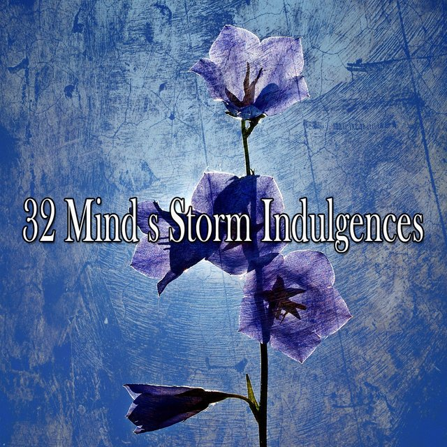 32 Mind S Storm Indulgences