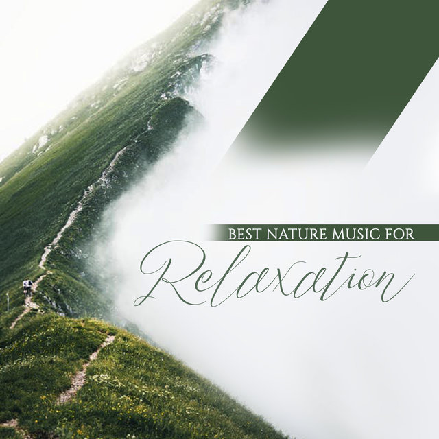 Best Nature Music for Relaxation: 2019 Collection of Soft Healing Nature New Age Music for Relax, Rest and Calm Down, Background for Wellness & Spa Healing Treatments