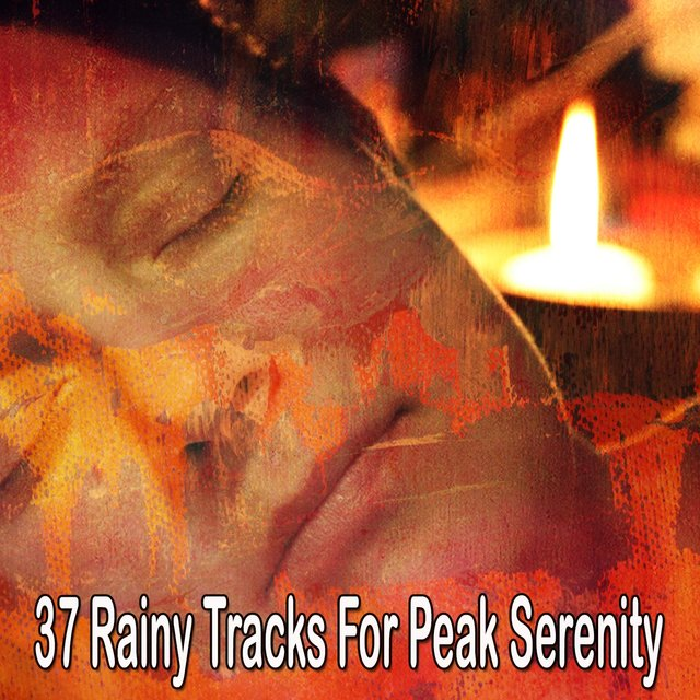 37 Rainy Tracks for Peak Serenity