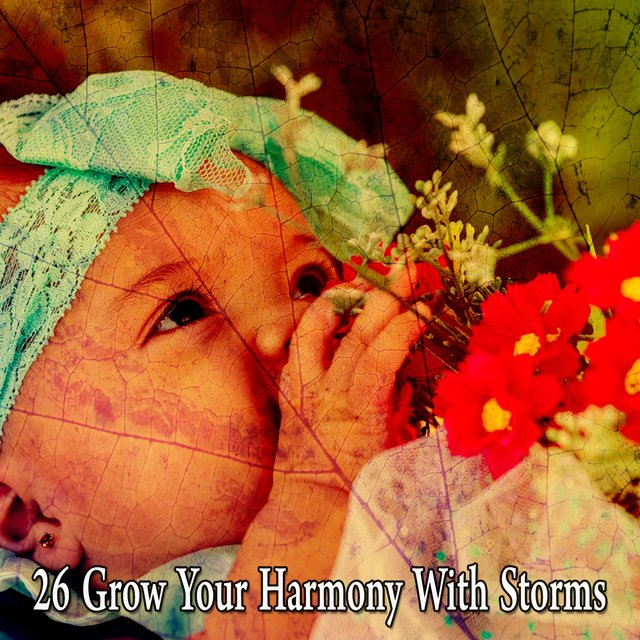 26 Grow Your Harmony with Storms