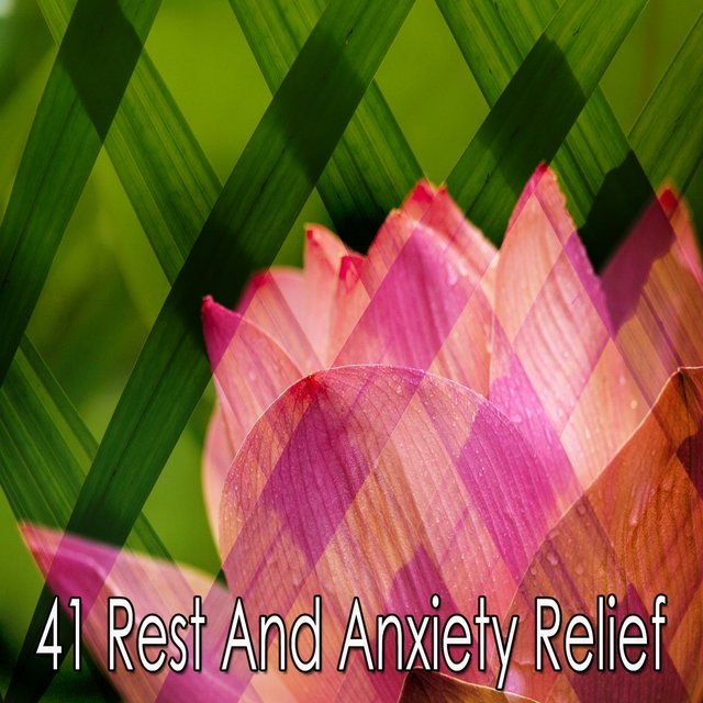 41 Rest and Anxiety Relief