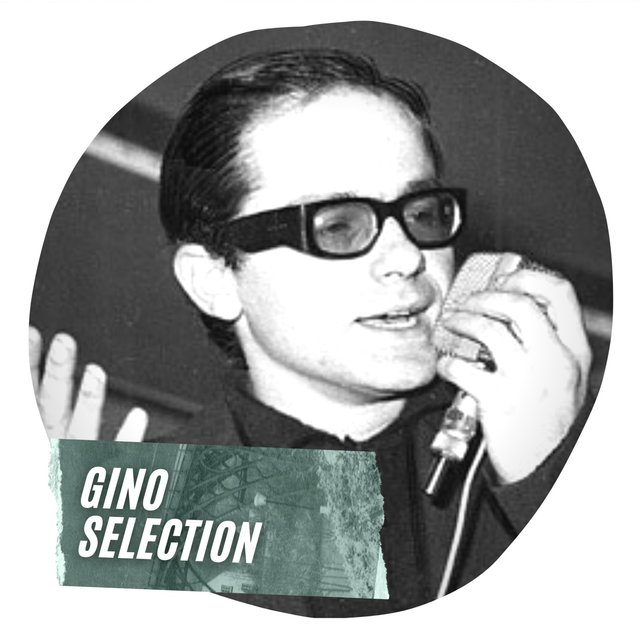 Gino Selection