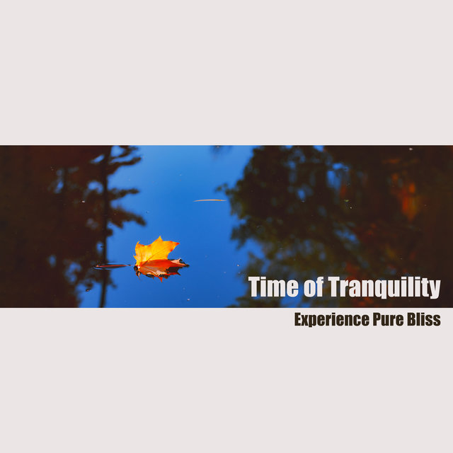 Time of Tranquility - Experience Pure Bliss with the Best Collection of Meditation Music with Nature Sounds and Relaxing Music