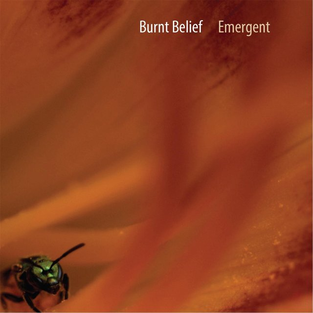 Cover art for album Emergent by Burnt Belief