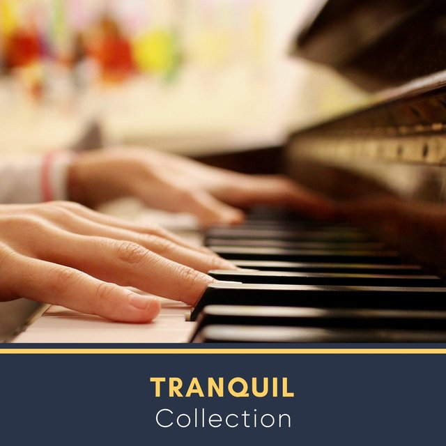 Tranquil Chillout Collection