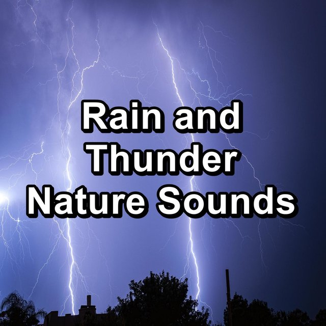 Rain and Thunder Nature Sounds