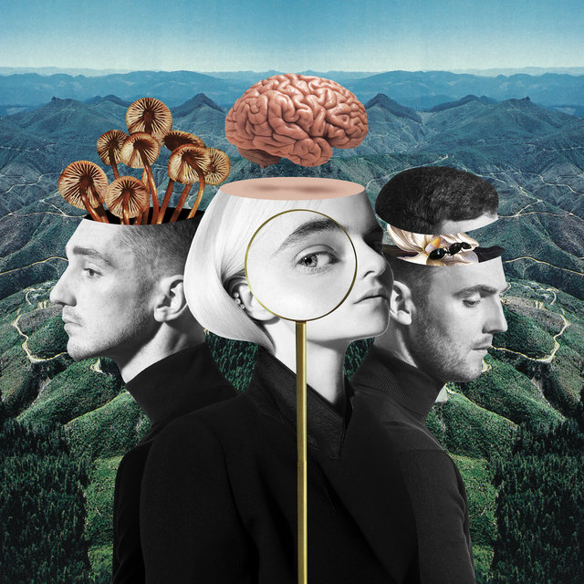 Cover art for album What Is Love? (Deluxe Edition) by Clean Bandit