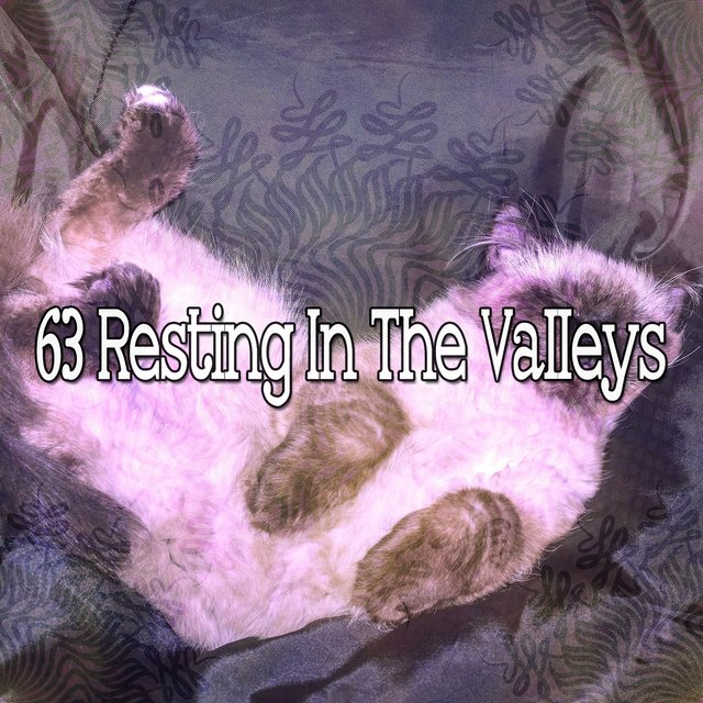 63 Resting in the Valleys