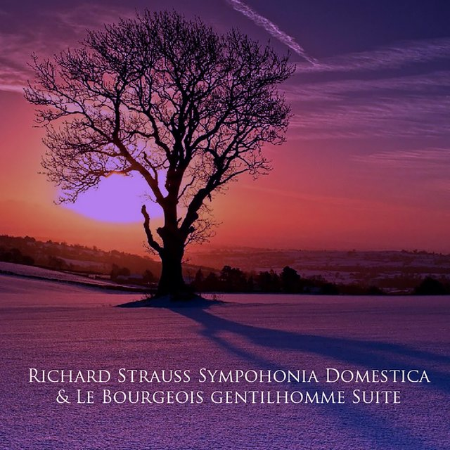 Richard Strauss Sympohonia Domestica & Le Bourgeois gentilhomme Suite
