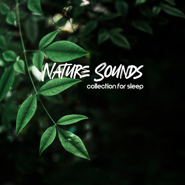 Nature Sounds Collection for Sleep