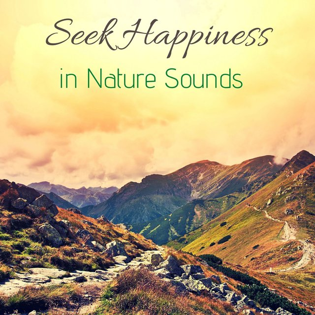 Seek Happiness in Nature Sounds: Calm, Relax, Meditation & Morning Peace Music