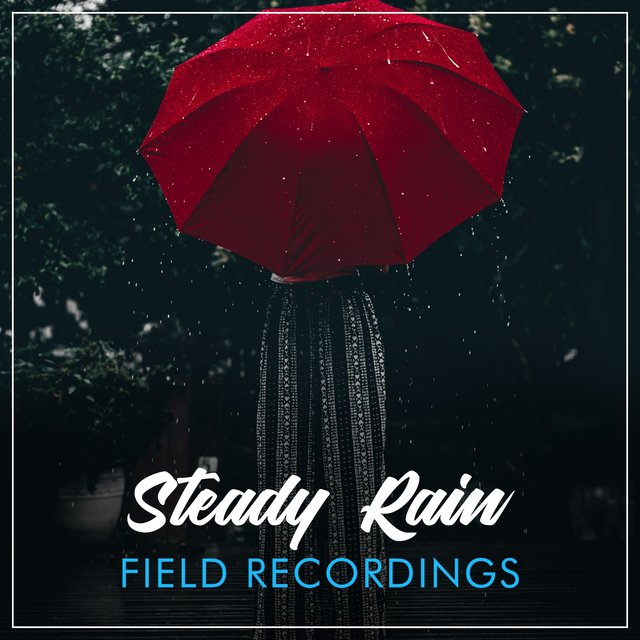 Quiet Steady Rain & Water Field Recordings