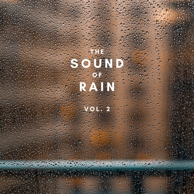 The Sound of Rain Vol. 2, Library of Thunder and Lightning Storms