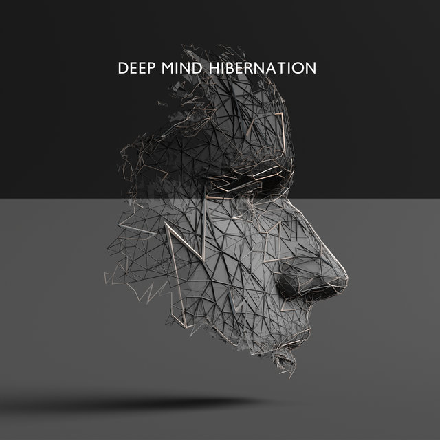 Deep Mind Hibernation – Interstellar Chillout Music for Total Relaxation and Better Sleep Quality Through the Night