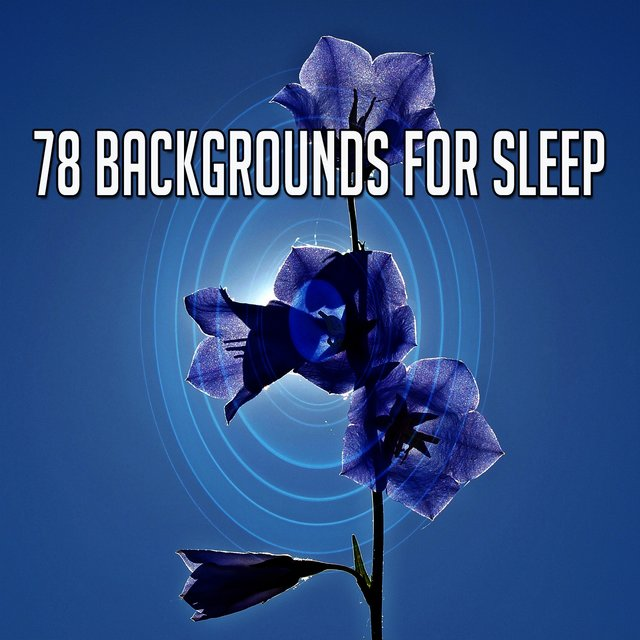 78 Backgrounds for Sle - EP