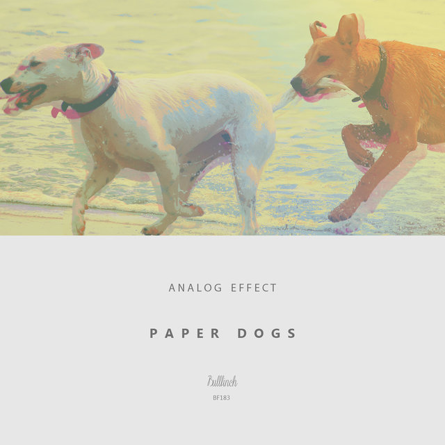 Paper Dogs