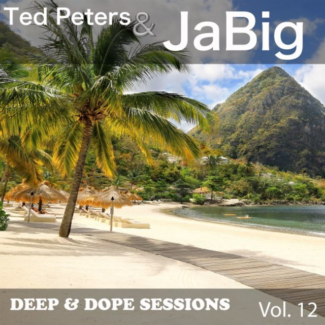 Deep & Dope Sessions, Vol. 12