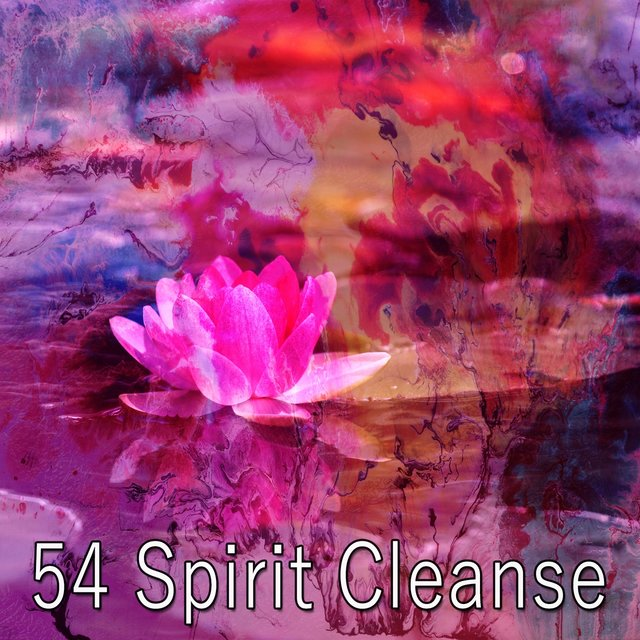 54 Spirit Cleanse