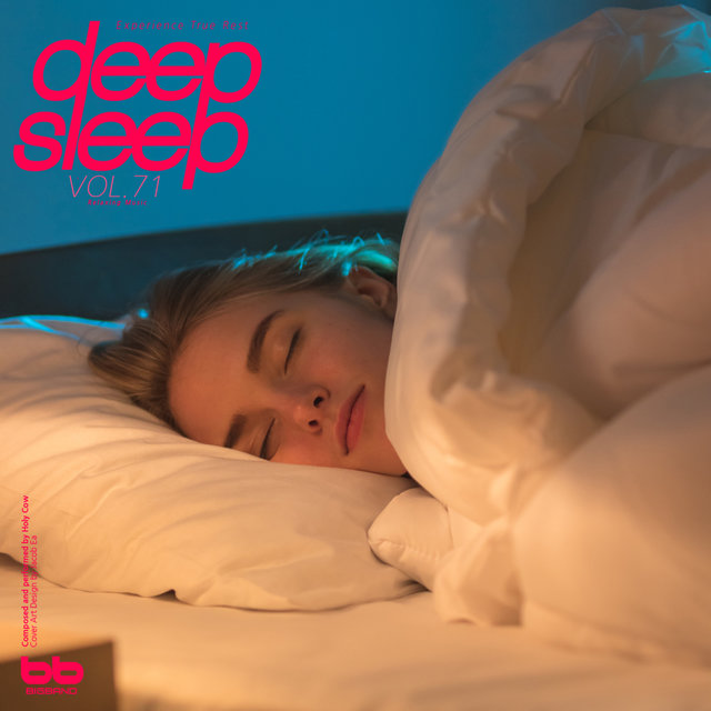 Deep Sleep, Vol. 71(Relaxation,Relaxing Muisc,Insomnia,Meditation,Lullaby,Prenatal Care,Healing)