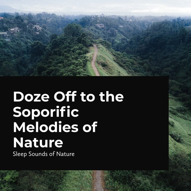 Doze Off to the Soporific Melodies of Nature